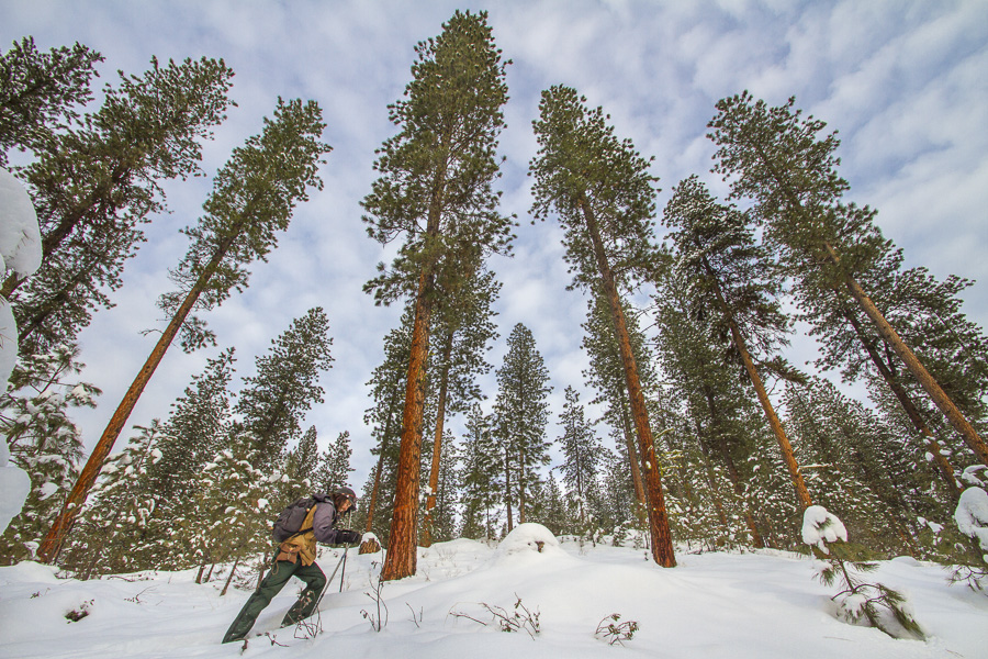 03__2015-01-02-id-snow-showing-hotsprings-ph-jess_006-jess-woodhouse-chris-riesner-hike-trailboundco