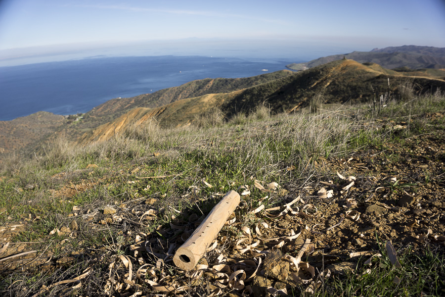10__2014-12-28-catalina-island-backpacking-flute_066