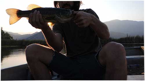 Solo Bass Fishing // Central Sierras